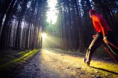 Nordic Walking Morgenstimmung in Gablingen