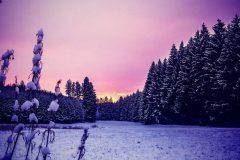 Winter-Westliche-Waelder-Gablingen-scaled