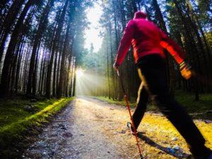 Nordic Walking in Augsburg