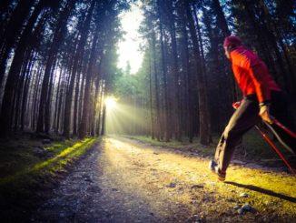 Nordic Walking - Tipps zum Start